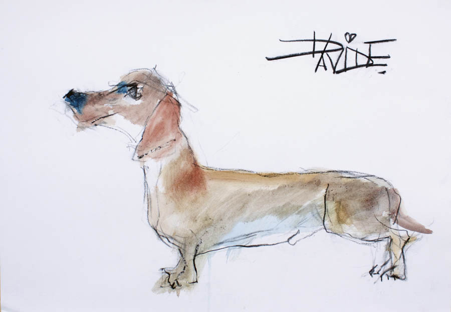 Valerie Davide original dog Sherlock
