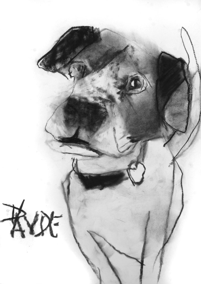 Valerie Davide dog Steadman