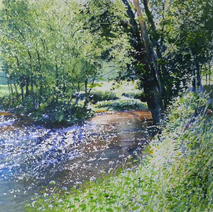 Robert Dudley - Summer shallows on the Erme