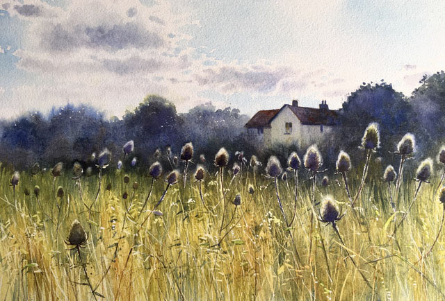Robert Dudley - Teasels at Valley Farm